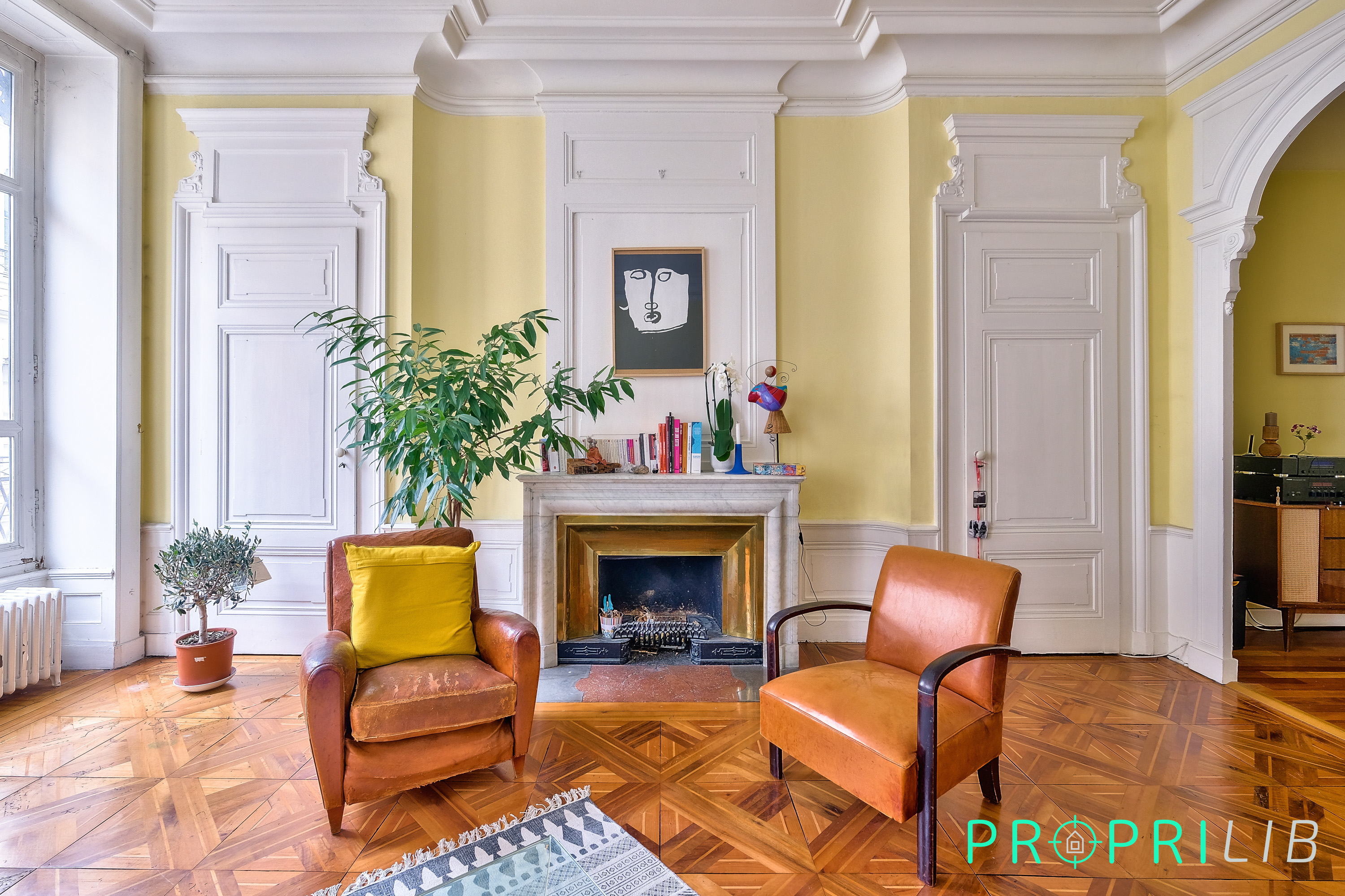 agence-immobiliere-lyon-2e