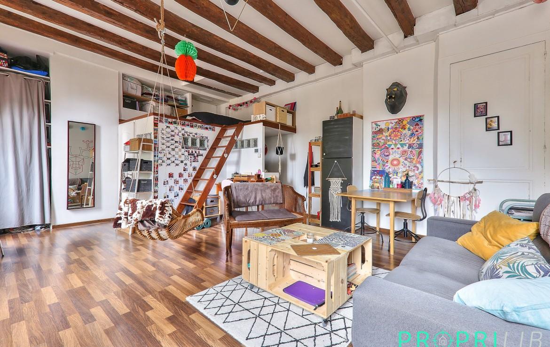 acheter-appartement-appartement-place-saint-paul