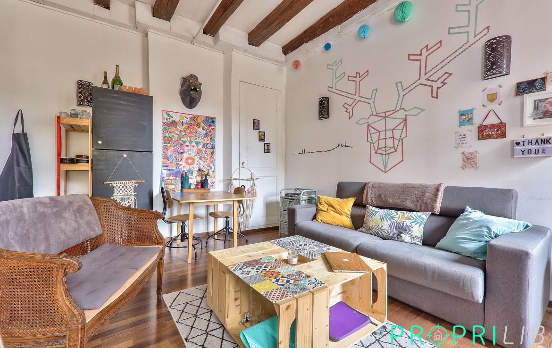 acheter-appartement-appartement-vieux-lyon
